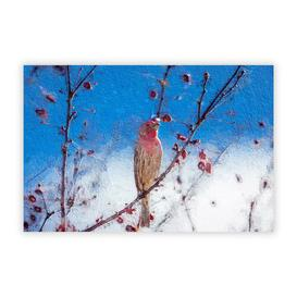 image-House Finch Bird' - Unframed Painting Print on Paper East Urban Home Size: 21 cm H x 29.7 cm W