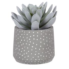 image-Artificial succulent in grey polka-dotted pot