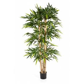 image-Kisho Floor Bamboo Tree in Pot artplants.de Size: 270cm H x 130cm W x 130cm D
