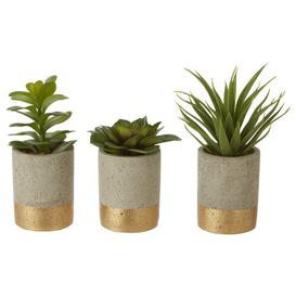 image-3 Artificial Succulent Plant in Pot Set Bloomsbury Market
