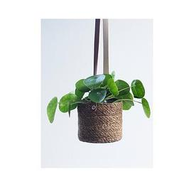 image-Ivyline Set 2 Gallo Seagrass Lined Hanging Planters