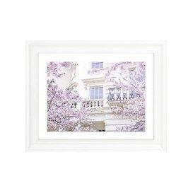 image-Assaf Frank - London Blossom I Framed Print & Mount, 37 x 47cm
