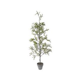 image-Libra Faux Juniper Plant In Decorative Pot 198cm