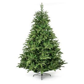 image-The Tree Company 7ft Nordman Fir Christmas Tree - Green