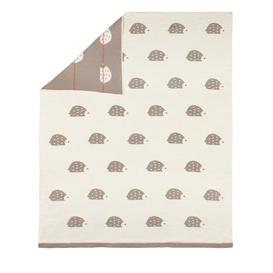 image-Hedgehog Blanket Art for kids
