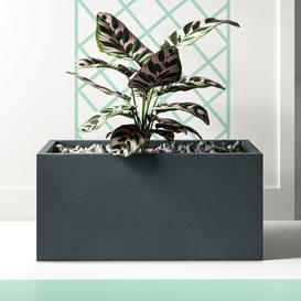 image-Contemporary Smooth Stone Planter Box Hashtag Home Colour: Dark Grey, Size: 30 cm H x 65 cm W x 19 cm D