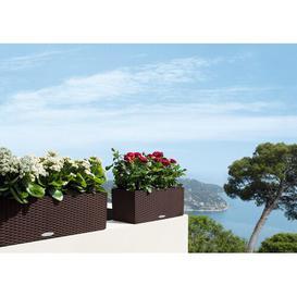 image-Balconera Self-Watering Balcony Planter Lechuza Colour: Mocha, Size: 19 cm H x 79 cm W x 19 cm D