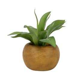 image-Artificial Agave in Round Brown Pot