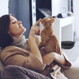 image-Natalie Round Cat Bed