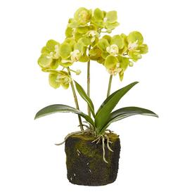 image-Faux Planted Mini Orchid - Green