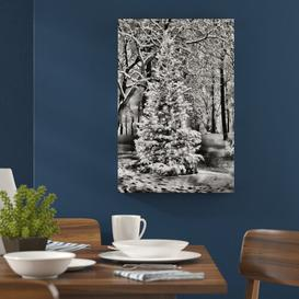 image-Lit-Up Christmas Tree Photographic Print on Canvas in Monochrome East Urban Home Size: 60cm H x 40cm W