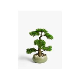 image-John Lewis & Partners Artificial Bonsai Pine Tree