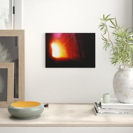image-Landscape Forest Light at Night Photographic Print on Canvas Big Box Art Size: 35cm H x 50cm W