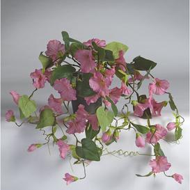 image-Petunia Desktop Flowering Plant in Pot Bay Isle Home Flower Colour: Pink