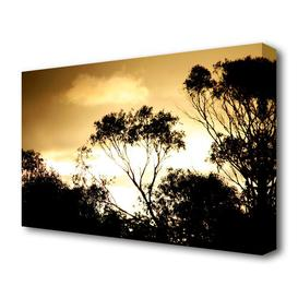 image-'Golden Light Treetops Landscape' Photographic Print on Canvas East Urban Home Size: 66 cm H x 101.6 cm W