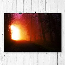 image-Landscape Forest Light at Night Photographic Print Big Box Art Size: 59.4cm H x 84.1cm W