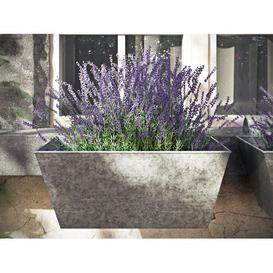 image-Alessia Metal Balcony Planter (Set of 2) Fleur De Lis Living