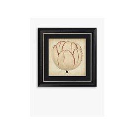 image-Pop Floral II Framed Print & Mount, 56 x 56cm, Black/White