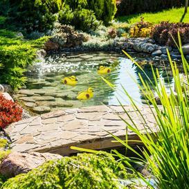 image-Pridmore Duckling Statue Sol 72 Outdoor