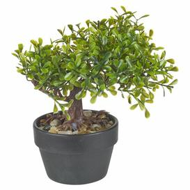 image-Artificial Bonsai Desktop Tree in Pot Symple Stuff