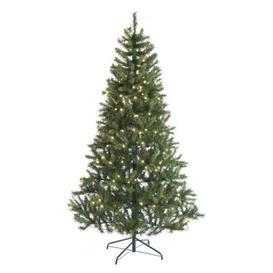 image-150cm (5 Foot) Warm White Heartwood Spruce 368 Tips Christmas Tree