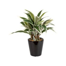 image-Artificial Plant in Black Ceramic Pot