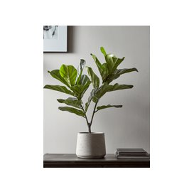 image-Faux Potted Fig Tree