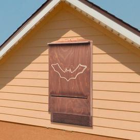 image-Marazi Mounted Bat House