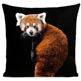 image-Bramber Cushion Cover Bloomsbury Market Colour: Deep Black