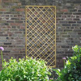 image-Devin Wood Lattice Panel Trellis (Set of 3) Sol 72 Outdoor Size: 180cm H x 90cm W