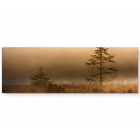 image-Christmas Tree in the Marshlands in Fog Photographic Print on Canvas East Urban Home Size: 150cm L x 50cm W