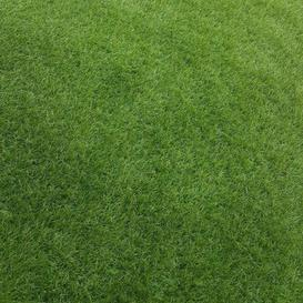 image-Moorava Grass Selsey Living Size: 400 W x 90 D cm