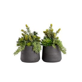 image-2 Artificial Succulent Plant in Planter Set Bay Isle Home