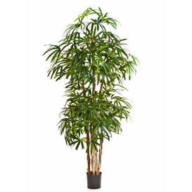 image-Nara Floor Rhapis Palm in Pot artplants.de Size: 140cm H x 40cm W x 40cm D