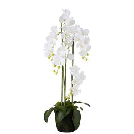 image-2 Artificial Orchid Plant in Planter Set Willa Arlo Interiors Size: 116cm H x 10cm W x 10cm D