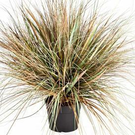 image-Fabian Floor Marram Grass in Pot artplants.de Size: 70cm H x 55cm W x 55cm D, Flower/Leaves Colour: Green/Brown