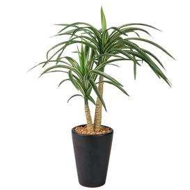 image-Artificial Yucca in Black Pot