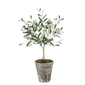 image-Flora Floor Olive Tree Tree in Planter Lene Bjerre
