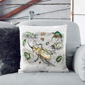 image-Assortment of Beetles XlII by Oliver Goldsmith Cushion with Filling