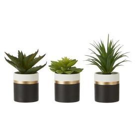 image-3 Artificial Succulent Plant in Pot Set Canora Grey Container Colour: Black/White