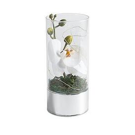 image-Glass Tube With Artificial Flower And 6 Led Lights 20Cm