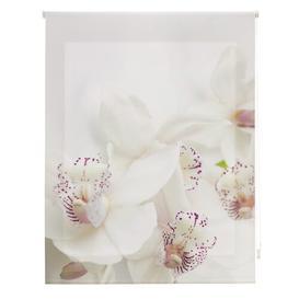 image-Room Orchid Sheer Roller Blind Ebern Designs Size: 110cm W x 250cm L