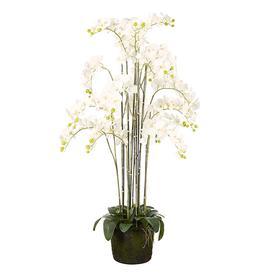 image-Faux Giant Phalaenopsis Orchid - White
