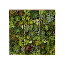 image-Artificial Plant Wall Art 17x70