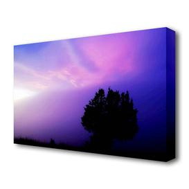 image-'Lilac Tree Light Landscape' Photographic Print on Canvas East Urban Home Size: 50.8 cm H x 81.3 cm W