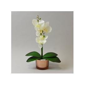image-Cream Orchid in Gold Glass Pot 28cm Cream