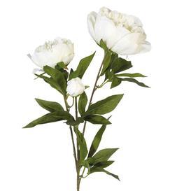 image-Faux Peony Duchesse de Nemours Flower Stem - White