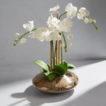 image-Dorma Artificial Orchid Arrangement White in Glass Vase 60cm White