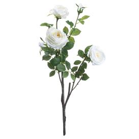 image-Classic White Garden Rose Spay