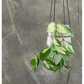 image-Matchstick Ceramic Hanging Planter
